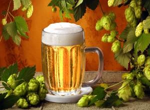 skolko derzhitsya pivo v organizme