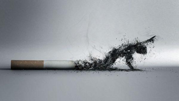 Освобождение от курения