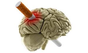 Kurenie i mozg